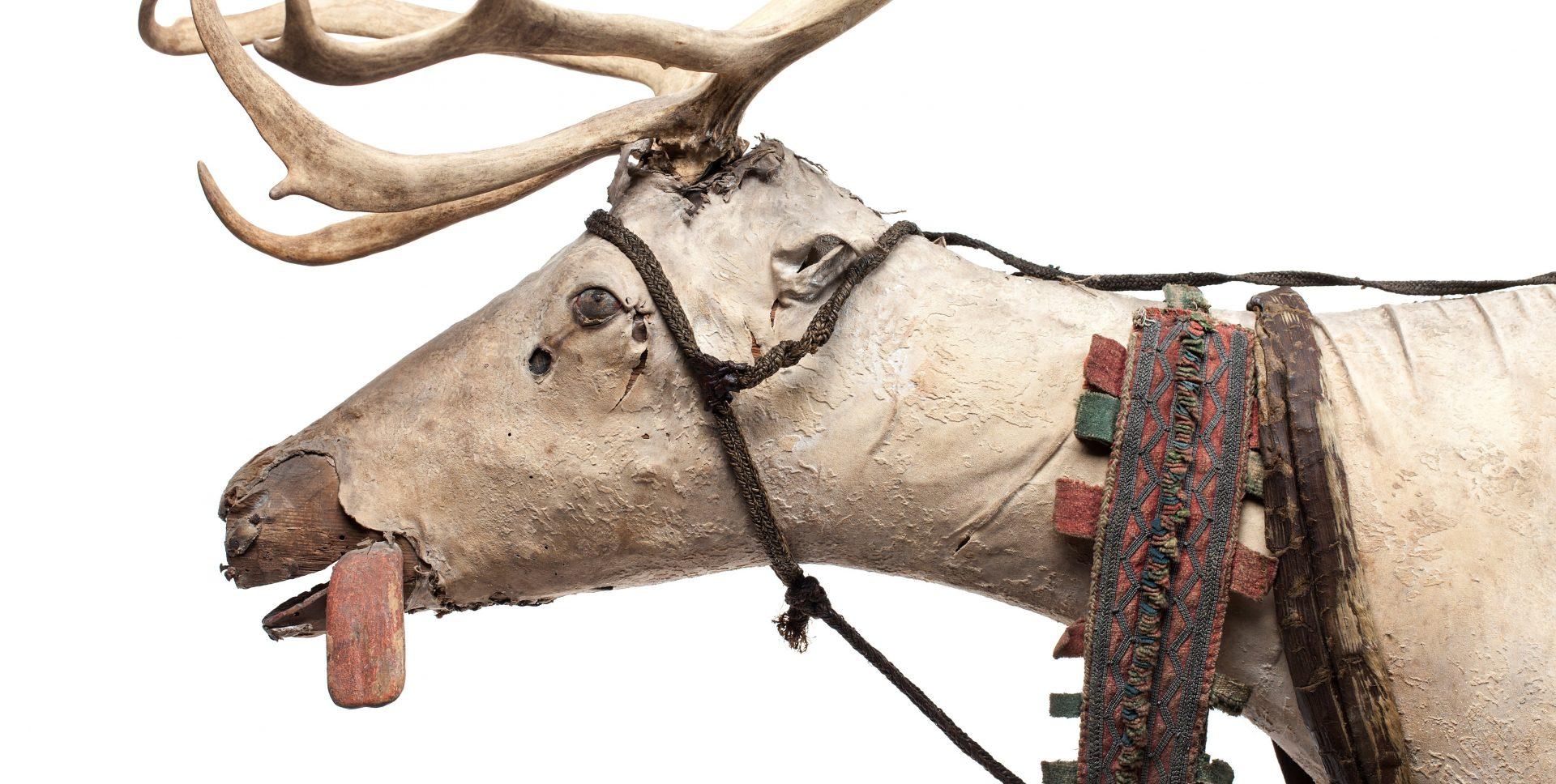 A stuffed reindeer.